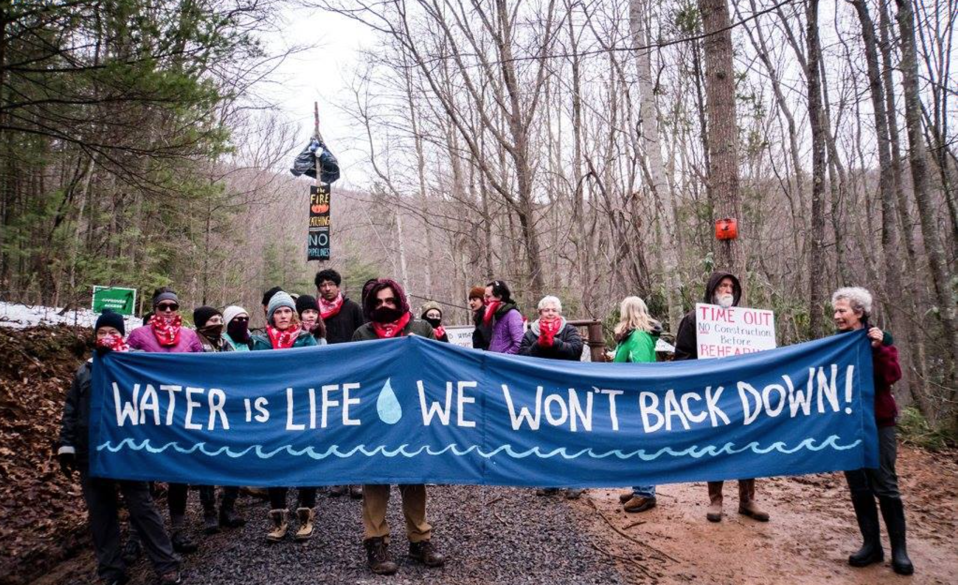 Yellow Finch Tree Sits, March 2018 (Photo: Appalachians Against Pipelines)